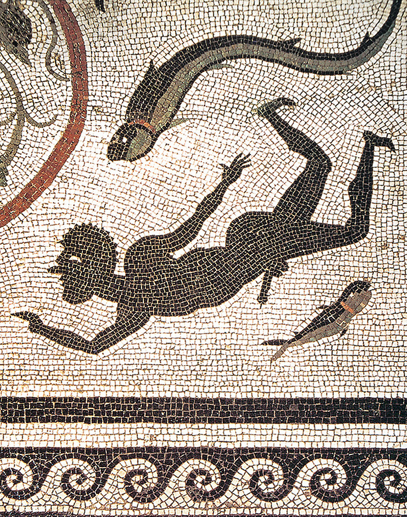 Mosaic with a swimming ithyphallic man. House of Menander.